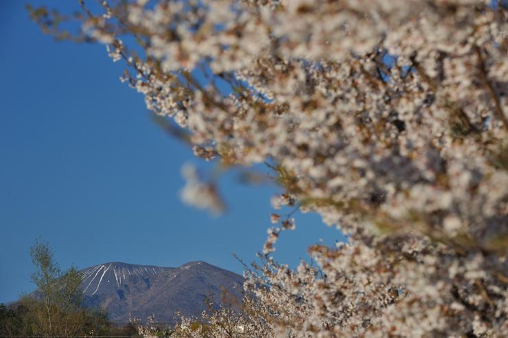 20100425_komoro801