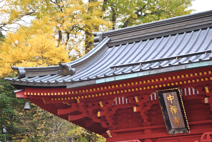 20101017_tyuzenji41