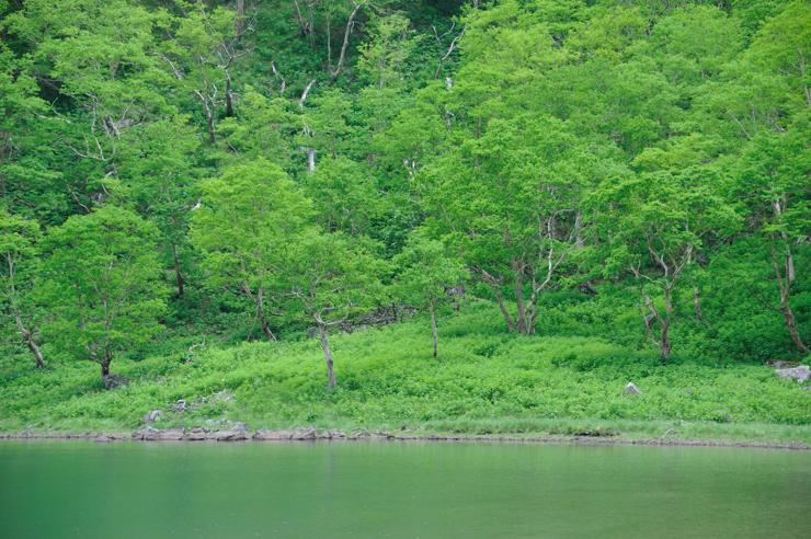 20110709_shirane91