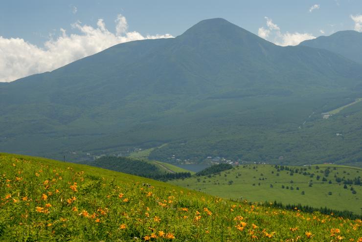 20110716_kuruma301