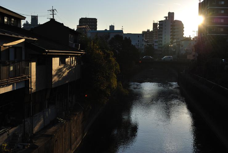 20111228_kuma191