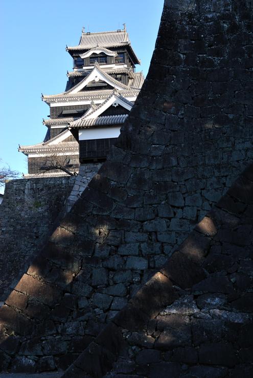 20111228_kuma241
