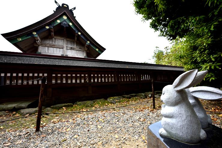 20150503_usagi1