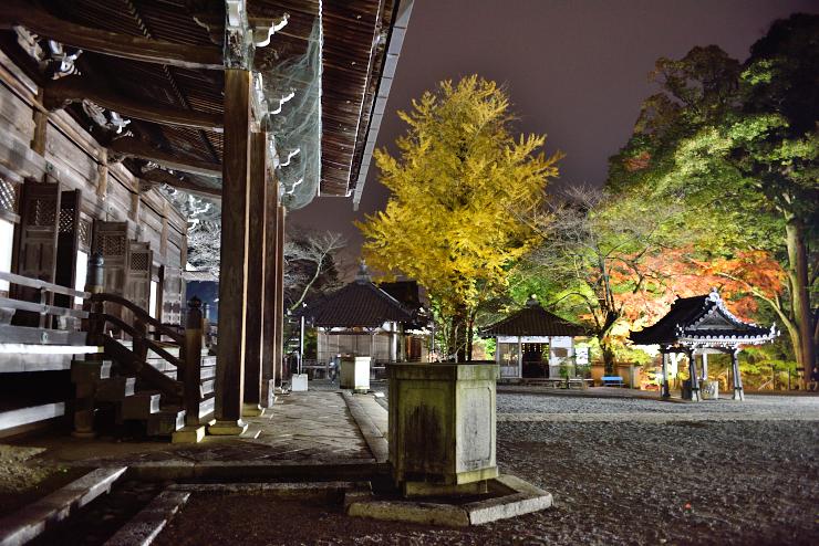20151121_saikyouji2
