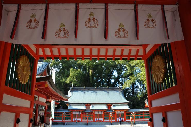 20170304_kumako716_291
