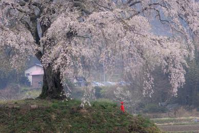 20080426_kamihochi101