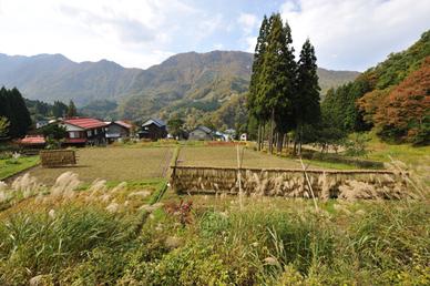 20091017_akiyama101