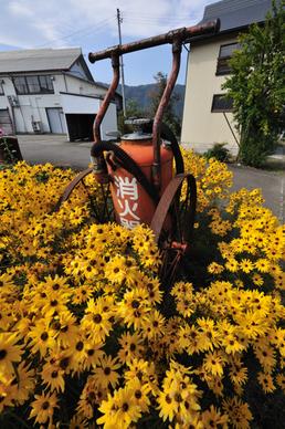 20091017_akiyama141